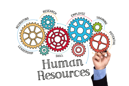 career development: Gears and Human Resources Mechanism on Whiteboard Stock Photo