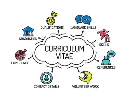 Curriculum vitae. Gráfico con las palabras clave y los iconos. Bosquejo Ilustración de vector