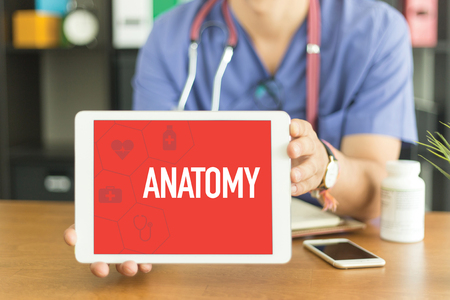 Young and professional medical doctor showing a tablet pc and ANATOMY concept on screen Stock Photo