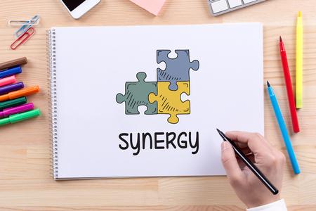 synergy: SYNERGY CONCEPT