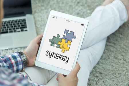 sinergia: CONCEPTO DE SINERGIA