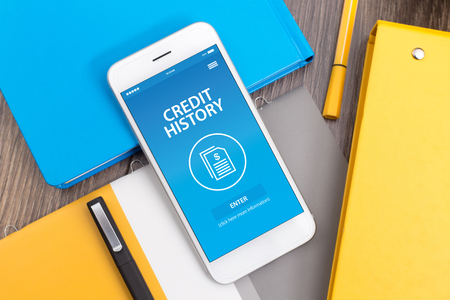 borrowing: CREDIT HISTORY CONCEPT ON SCREEN