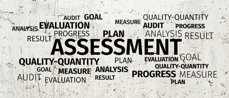 assessment system: Business Concept: Assessment Word Cloud