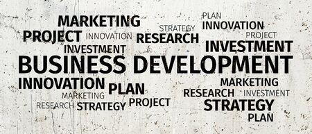 Concept: Développement d'affaires Nuage de mots