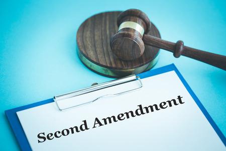 amendment: SECOND AMENDMENT CONCEPT