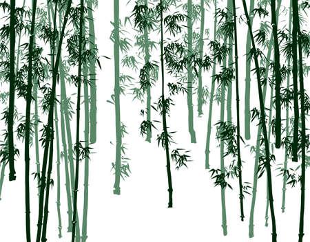 パターン 写真素材 - 19766449