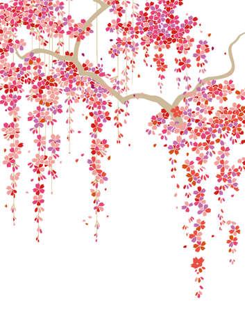 fleur cerisier: patron Illustration