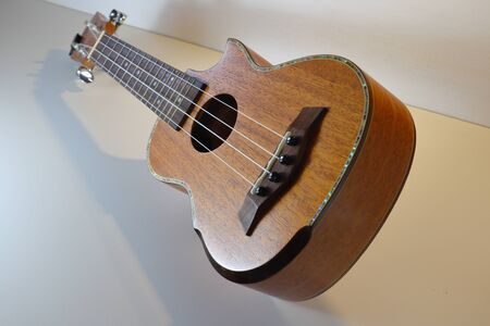 Ukulele is a small musical instrument, easy to play and very fun