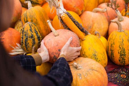 Close up woman choosing pumpkin for Halloween day at autumn farm shop outdoor