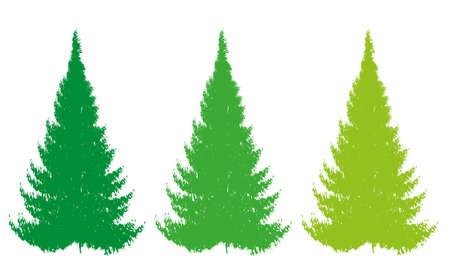christmas color tree vector Illustration