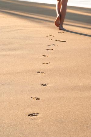left behind: Footprints on the  sunny beach left behind