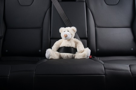 belt: Teddy bear fastened in the back seat of a car, safety on the road