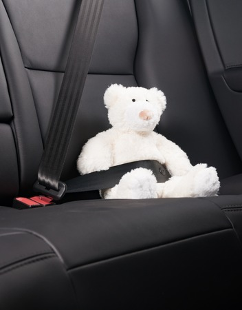 asiento: Teddy bear fastened in the back seat of a car, safety on the road