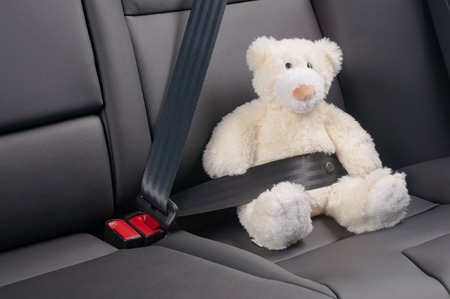 strapped: Teddy bear fastened in the back seat of a car, safety on the road