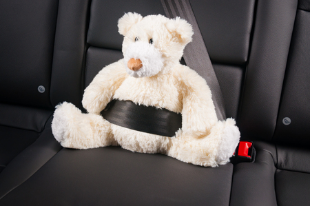 fastened: Teddy bear fastened in the back seat of a car, safety on the road