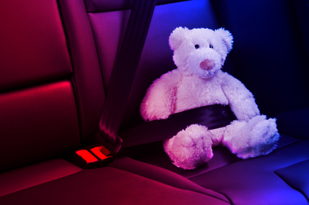 Teddy bear fastened in the back seat of a car, red and blue police lights
