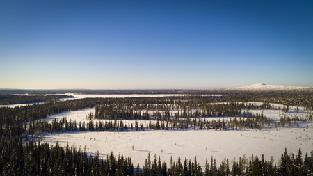 Aerial drone view of idyllic winter landscape. Green  snow covered forest from the top, sun rise in finland, nature from a birds eye view.