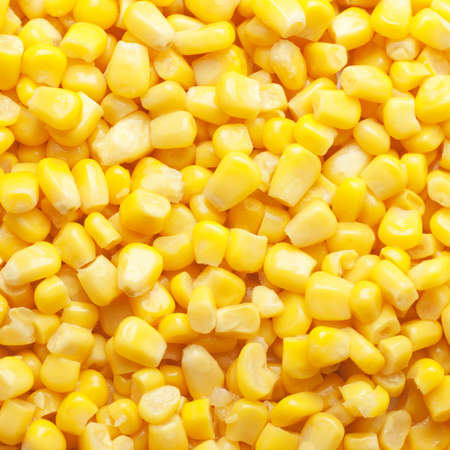 tinned: bright yellow tinned sweet corn square background