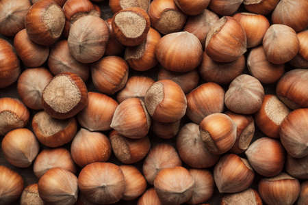 unbroken: hazelnuts on the brown wooden table background