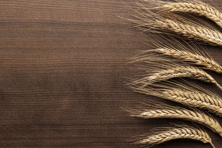 rye: ears of rye on the wooden background Stock Photo