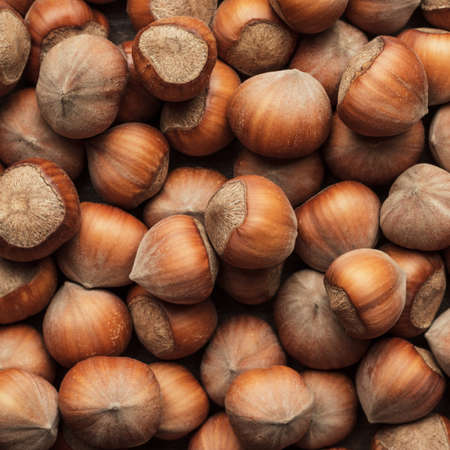 cobnut: hazelnuts on the brown wooden table background