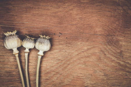 opiate: poppyheads full of poppyseeds on the wooden table Stock Photo