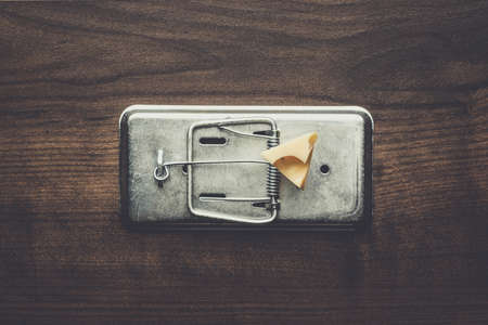 mousetrap: piece of cheese in metal mousetrap concept Stock Photo
