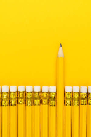 Row of yellow pencils with erasers. leadership concept Stock Photo