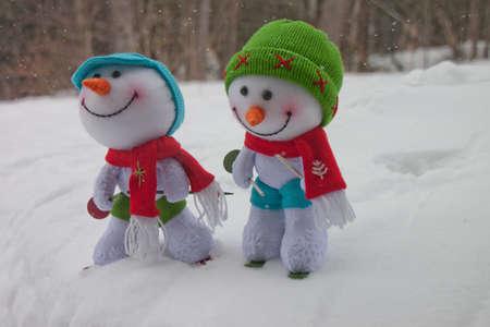 Ski buddies enjoy the outdoors