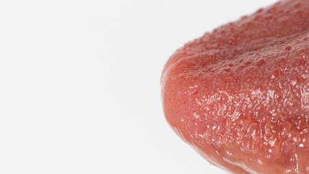 Macro photo of healthy human language. Tongue papillae taste buds and taste. A banner on a white background with space for text. Close up.