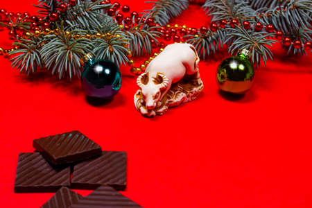 The symbol of 2021 is a bull on a red background with Christmas balls and spruce branches. With pieces of dark chocolate to congratulate the store of confectionery and sweets 写真素材