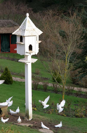 A dove box with flying doves in Devon, England.