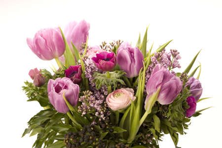 Tulip, Anemone, Lilac & Berries against a plain background