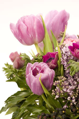 Tulip, Anemone, Lilac & Berries against a plain background Stock Photo - 716755
