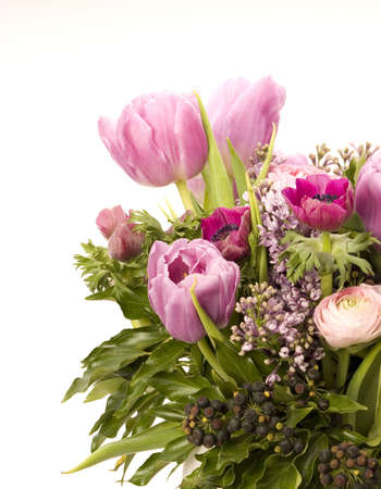 Tulip, Anemone, Lilac & Berries against a plain background Stock Photo - 716754