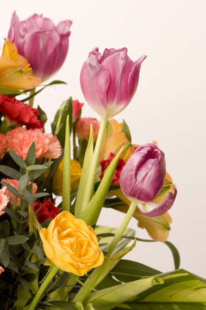Tulips, Carnations & roses against a plain background Stock Photo - 716724