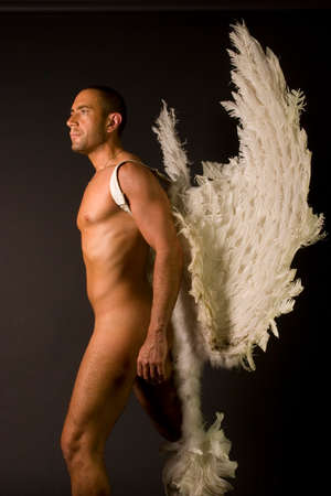 A portrait of a man with feathered wings against a dark background.