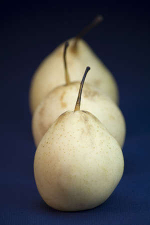 asian pear: Three Asian pear fruit on a linen blue background. Stock Photo