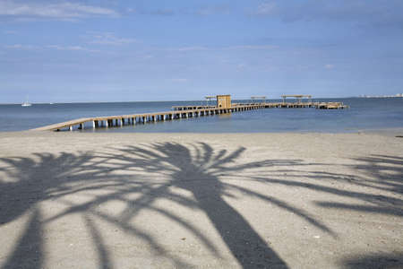 Palm tree shadow on Santiago del la ribera beach, Murcia. Spain, Stock Photo