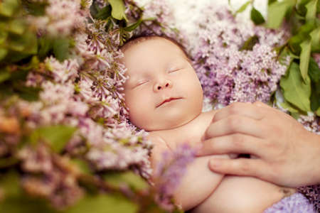 caresses: Newborn girl sleeping in the colors of lilac, but the hand of the mother caresses her and soothes