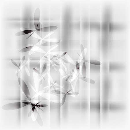 backdrop: black and white backdrop