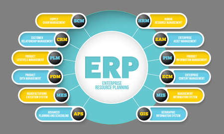 Vector info graphic with theme of erp system