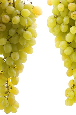 object on white - food green grapes