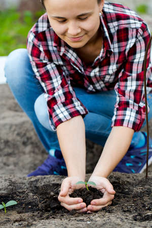 Woman seeding young plant in garden. Stock Photo