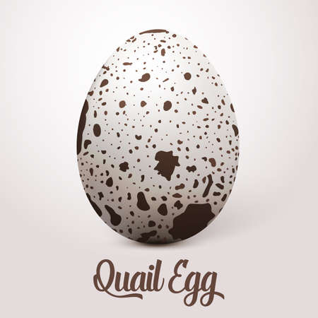 realistic white egg with spots.