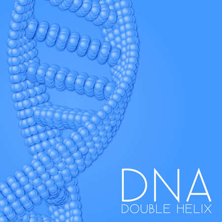 dna helix: Chain of spheres with soft shadows in form of helix. Abstract geometric background. Protein chain or DNA helix.