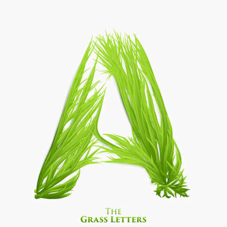 Vector letter A of juicy grass alphabet. Green A symbol consisting of growing grass. Realistic alphabet of organic plants. Spring and ecology typeset illustration. Illustration