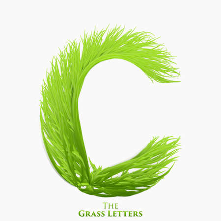 Vector letter C of juicy grass alphabet. Green C symbol consisting of growing grass. Realistic alphabet of organic plants. Spring and ecology typeset illustration. Illustration