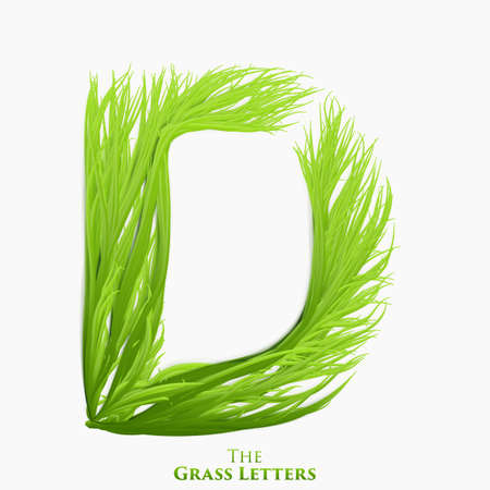 Vector letter D of juicy grass alphabet. Green D symbol consisting of growing grass. Realistic alphabet of organic plants. Spring and ecology typeset illustration. Stock Illustratie