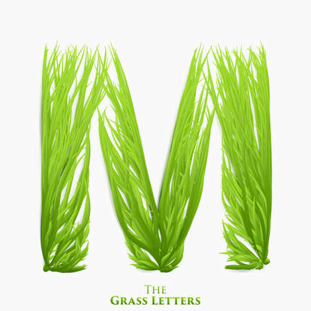 Vector letter M of juicy grass alphabet. Green M symbol consisting of growing grass. Realistic alphabet of organic plants. Spring and ecology typeset illustration